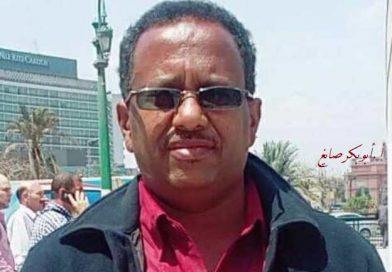 آراء تتهم السودان وإثيوبيا بإطالة أمد النظام الأرتري وقتل المعارضة وتصف الحصار العسكري بأنه مناورة لإجبار النظام الأرتري على المطاوعة وكف العدوان