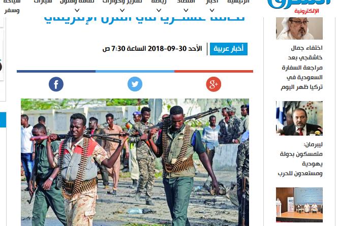 مصادر استخبارية: الإمارات تشكل تحالفاً عسكرياً في القرن الإفريقي