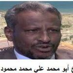 أ.علي محمد محمود يكتب عن الحرب الإثيوبية : هل كان حمل تقراي وزن الريشة ؟